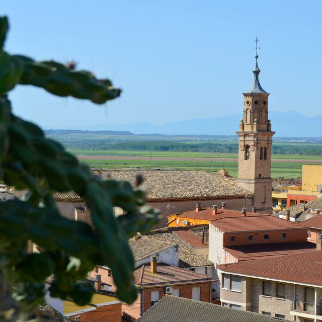 https://www.atrapaelnorte.com/wp-content/uploads/2020/07/001-la-ribera-de-navarra-sus-pueblos-con-todos-sus-secretos-turismo-rural-escapadas-norte-de-espana.jpg