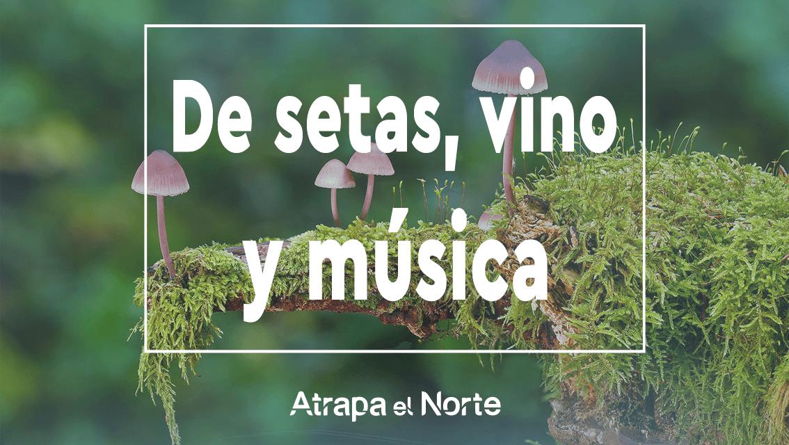 https://www.atrapaelnorte.com/wp-content/uploads/2021/10/jornadas-micologicas-en-tierras-de-iranzu-alloz-navarra-norte-de-espana-1134x640.png