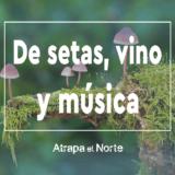 Actividades en la naturaleza, planes diferentes, actividades culturales, planes en familia en el norte de españa